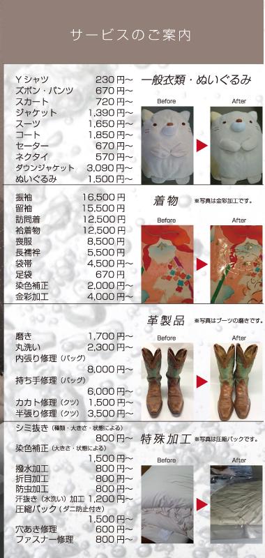 https://dfl-inc.jp/wp-content/uploads/2019/03/maejima03.png