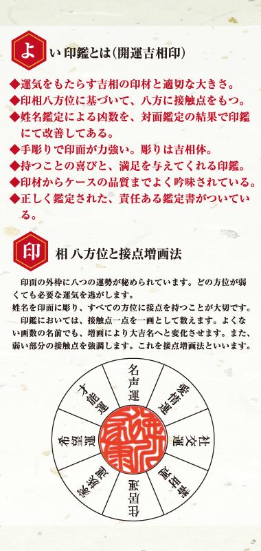 https://dfl-inc.jp/wp-content/uploads/2019/03/ootomo03.png